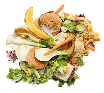 Food Recycling and Waste Management
